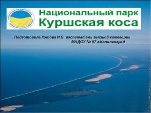 Подготовила Котова И.Б воспитатель высшей категории МАДОУ № 57 г.Калининград