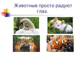 Животные просто радуют глаз.