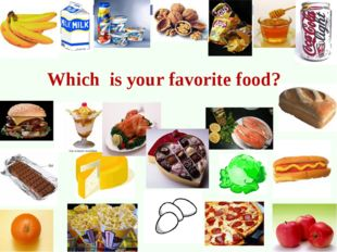 Which is your favorite food?