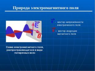 Природа электромагнитного поля Е - вектор напряжённости электрического поля В