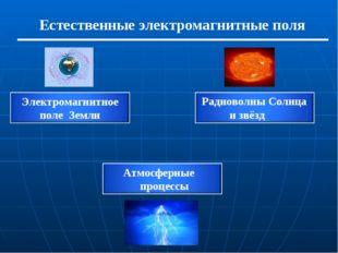 Естественные электромагнитные поля