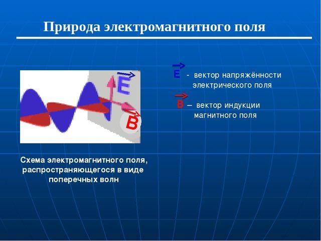 Природа электромагнитного поля Е - вектор напряжённости электрического поля В...