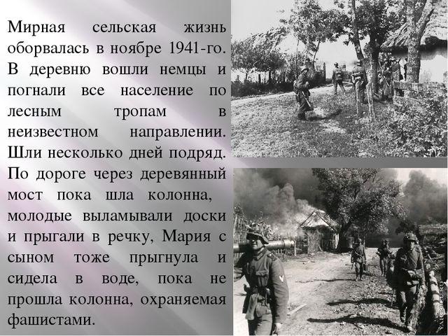 Мирная сельская жизнь оборвалась в ноябре 1941-го. В деревню вошли немцы и п...