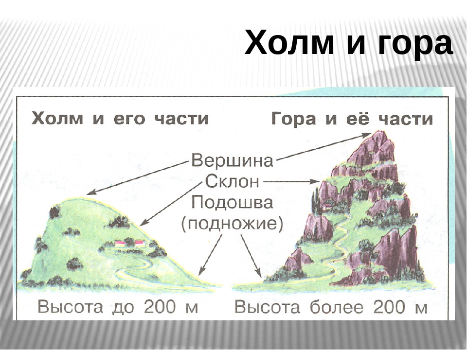 Холм и гора
