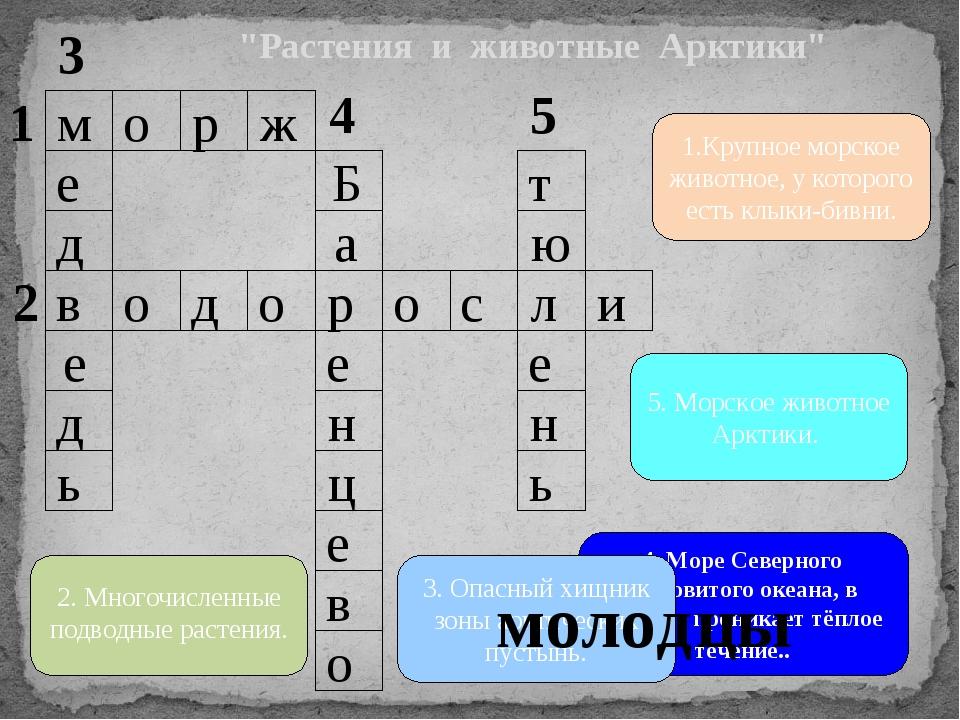 """Растения и животные Арктики"" ж р о м в и л с о р о д о а Б ь д е д е т о в е..."