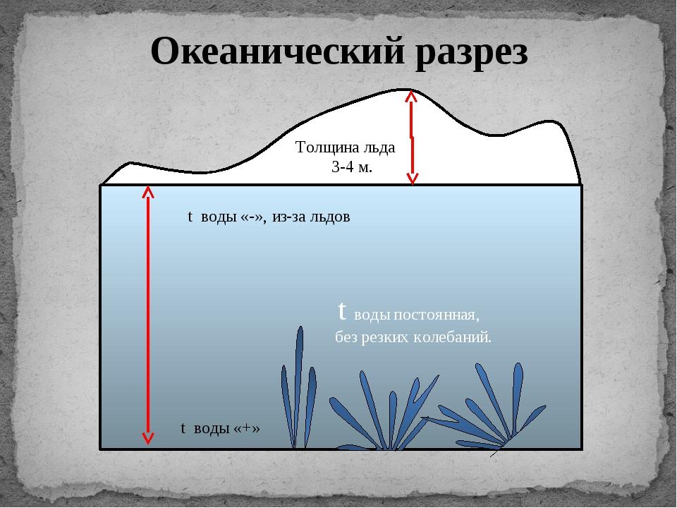 Толщина льда 3-4 м. t воды постоянная, без резких колебаний. t воды «-», из-...