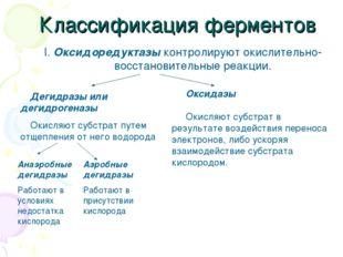 Классификация ферментов I. Оксидоредуктазы контролируют окислительно-восстано