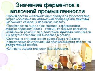 Значение ферментов в молочной промышленности Производство кисломолочных проду