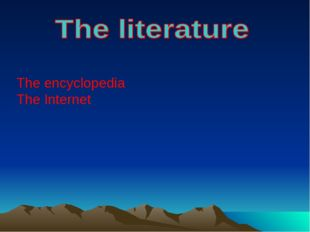The encyclopedia The Internet
