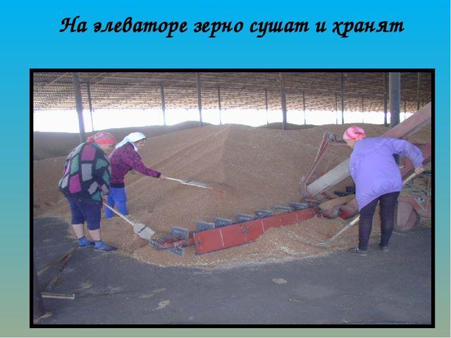 На элеваторе зерно сушат и хранят