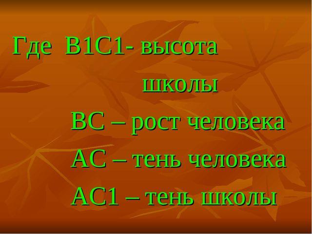 Где B1C1- высота школы BC – рост человека АС – тень человека AC1 – тень школы