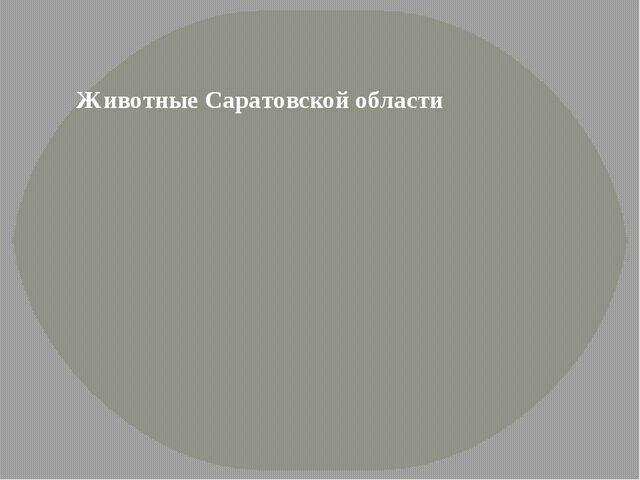 Животные Саратовской области