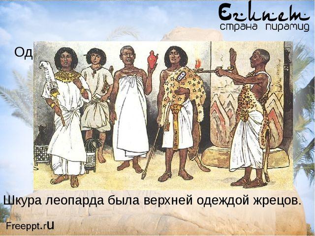 Одежда жрецов и чиновников Шкура леопарда была верхней одеждой жрецов.