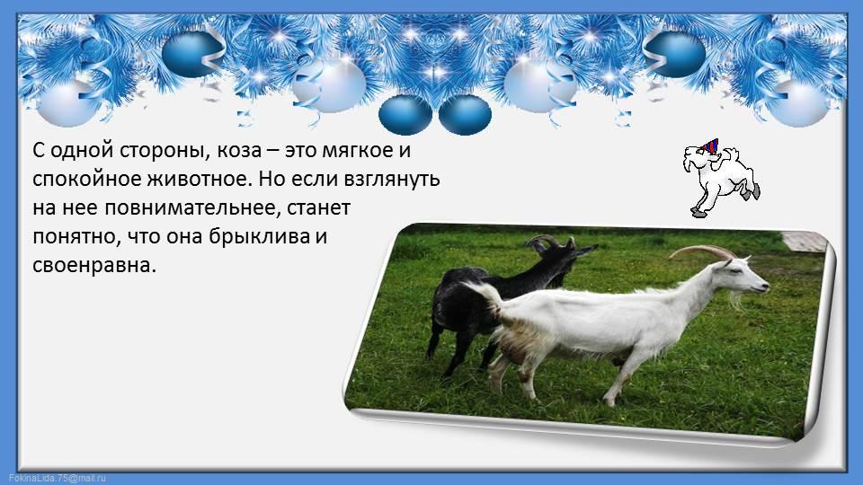 hello_html_m54c19165.jpg