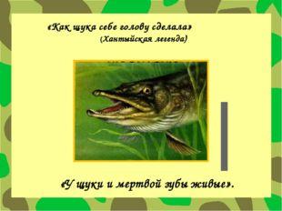 «Как щука себе голову сделала» (Хантыйская легенда) «У щуки и мертвой зубы жи