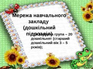 Мережа навчального закладу (дошкільний підрозділ) Стаціонарна група – 20 дош