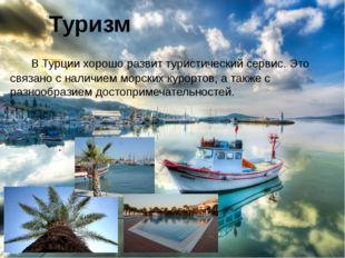 В Турции хорошо развит туристический сервис. Это связано с наличием морских