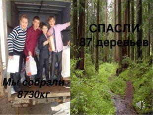 Мы собрали 8730кг СПАСЛИ 87 деревьев