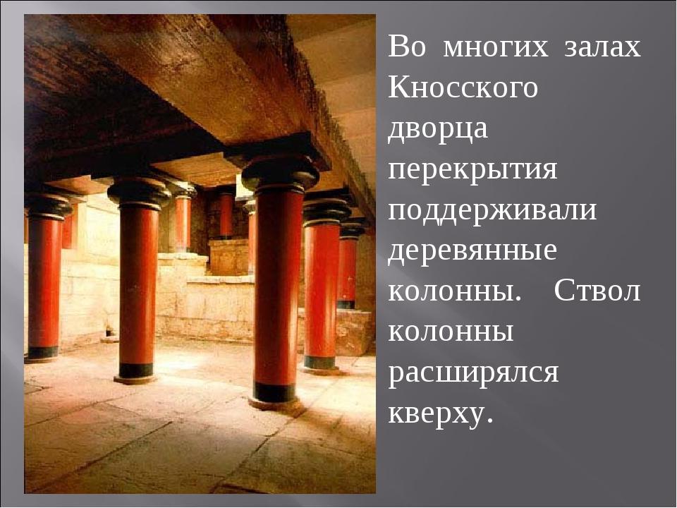 Во многих залах Кносского дворца перекрытия поддерживали деревянные колонны....