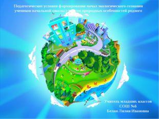 Педагогические условия формирования начал экологического сознания учеников н