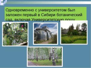 Одновременно с университетом был заложен первый в Сибири ботанический сад, вк