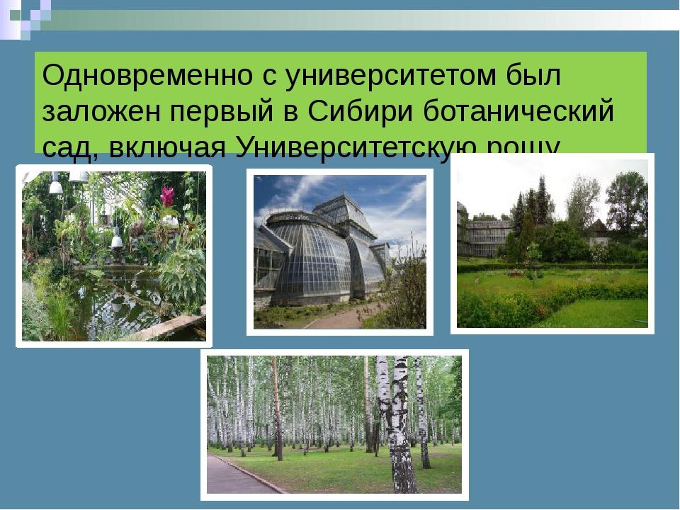 Одновременно с университетом был заложен первый в Сибири ботанический сад, вк...