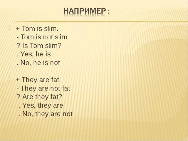 + Tom is slim. - Tom is not slim ? Is Tom slim? . Yes, he is . No, he is not...