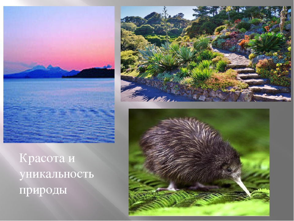 Красота и уникальность природы
