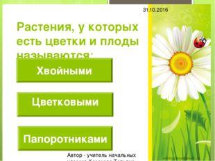 Растения, у которых есть цветки и плоды называются: Хвойными Папоротниками 31