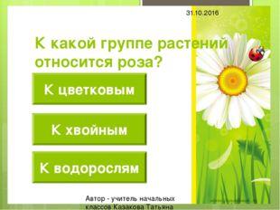 К какой группе растений относится роза? К цветковым К хвойным К водорослям 31