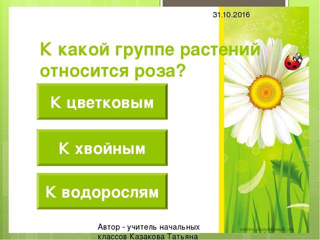 К какой группе растений относится роза? К цветковым К хвойным К водорослям 31...