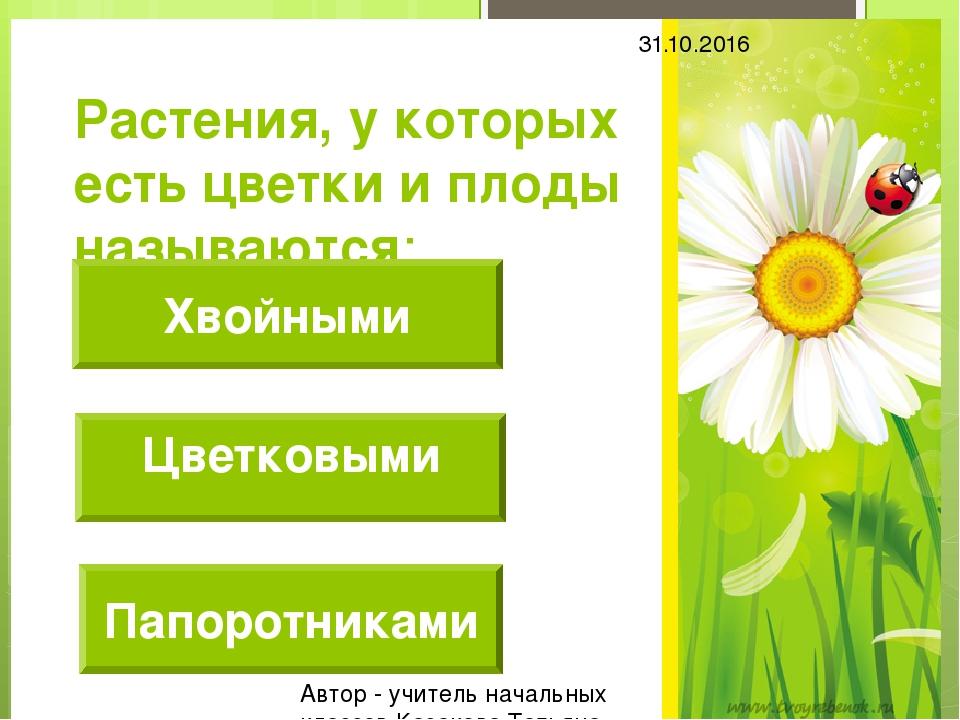 Растения, у которых есть цветки и плоды называются: Хвойными Папоротниками 31...