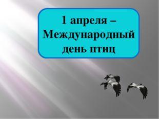 1 апреля – Международный день птиц
