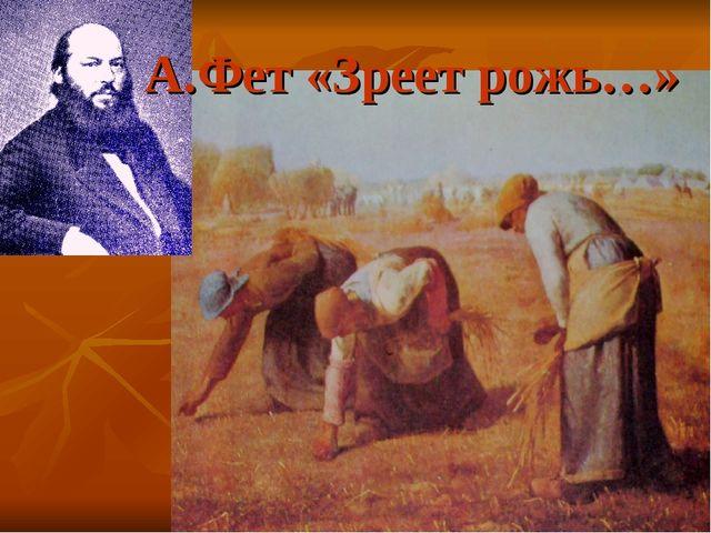 А.Фет «Зреет рожь…»