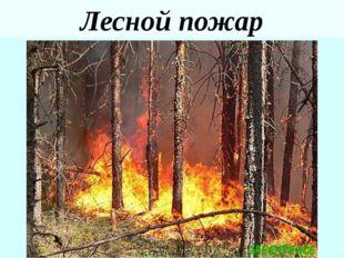 Степной пожар