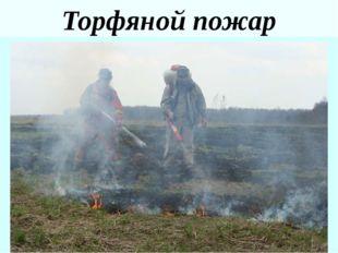 Критерии чрезвычайнойлесопожарнойситуации ГОСТ Р 22.1.09 – 99. БЧС. Мониторин