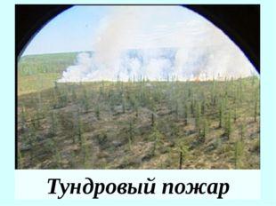 Классы лесных пожаров Класс лесного пожара Площадь, охваченная огнем, га 1. З
