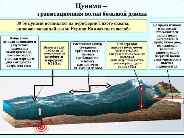 Цунами – гравитационная волна большой длины 80 % цунами возникают на перифери...
