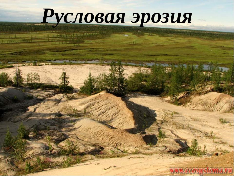Русловая эрозия