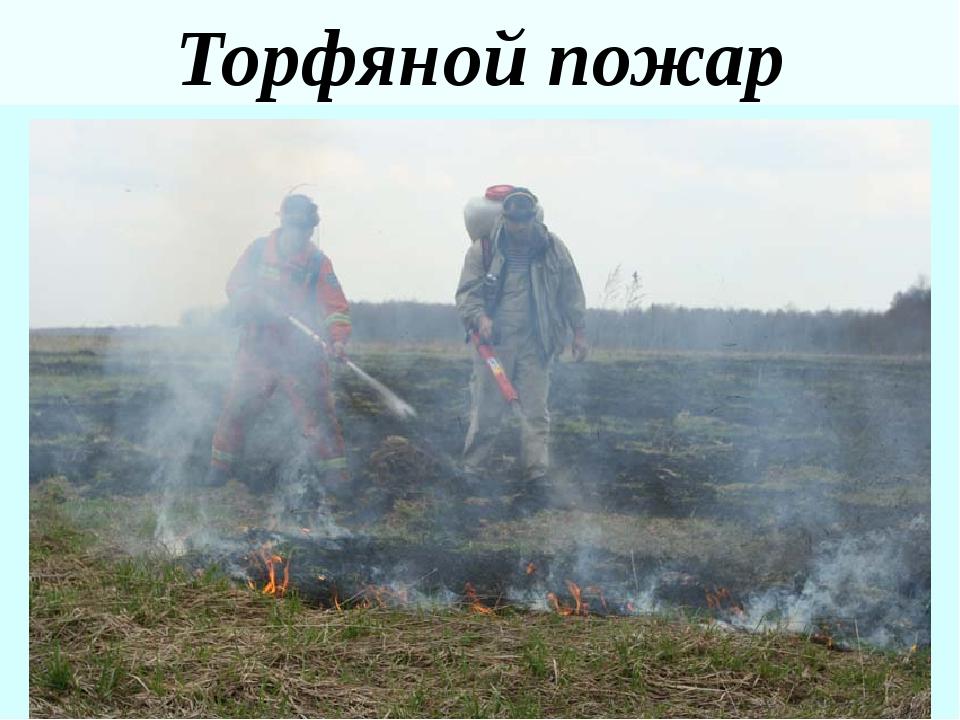 Критерии чрезвычайнойлесопожарнойситуации ГОСТ Р 22.1.09 – 99. БЧС. Мониторин...