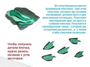 Из получившихся цветов формируем пластины , при этом пластина, которую мы ост