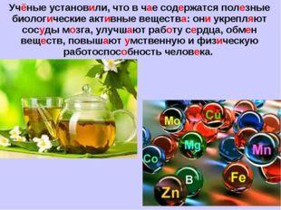 Учёные установили, что в чае содержатся полезные биологические активные вещес