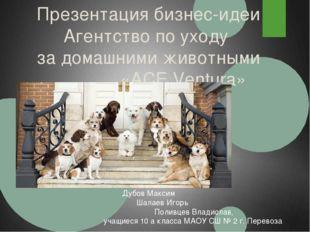 Презентация бизнес-идеи Агентство по уходу за домашними животными «ACE Ventur