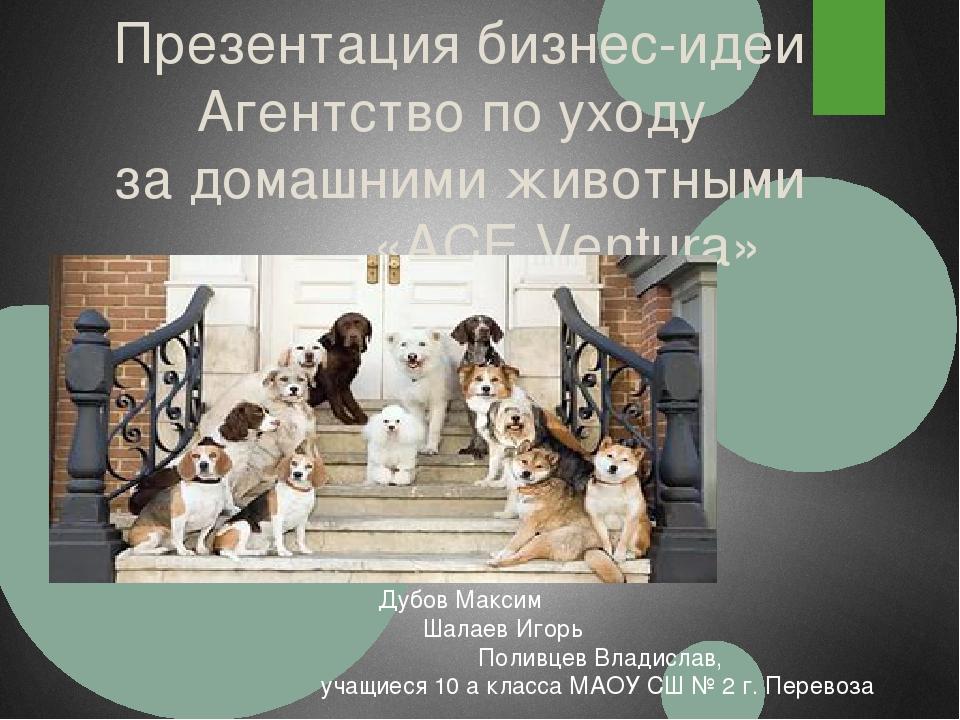 Презентация бизнес-идеи Агентство по уходу за домашними животными «ACE Ventur...