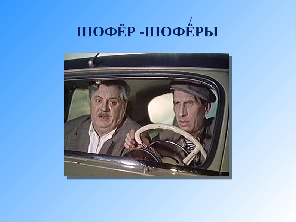 / ШОФЁР -ШОФЁРЫ