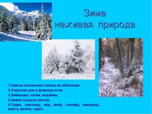 Зима неживая природа 1.Низкое положение солнца на небосводе 2.Короткие дни и