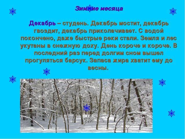 Зимние месяца Декабрь – студень. Декабрь мостит, декабрь гвоздит, декабрь пр...