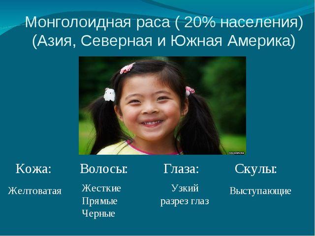 Монголоидная раса ( 20% населения) (Азия, Северная и Южная Америка) Кожа: Вол...