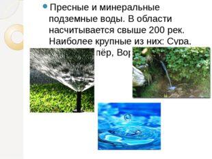 Пресные и минеральные подземные воды. В области насчитывается свыше 200 рек.
