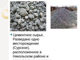 Цементное сырье. Разведано одно месторождение (Сурское), расположенное в Нико
